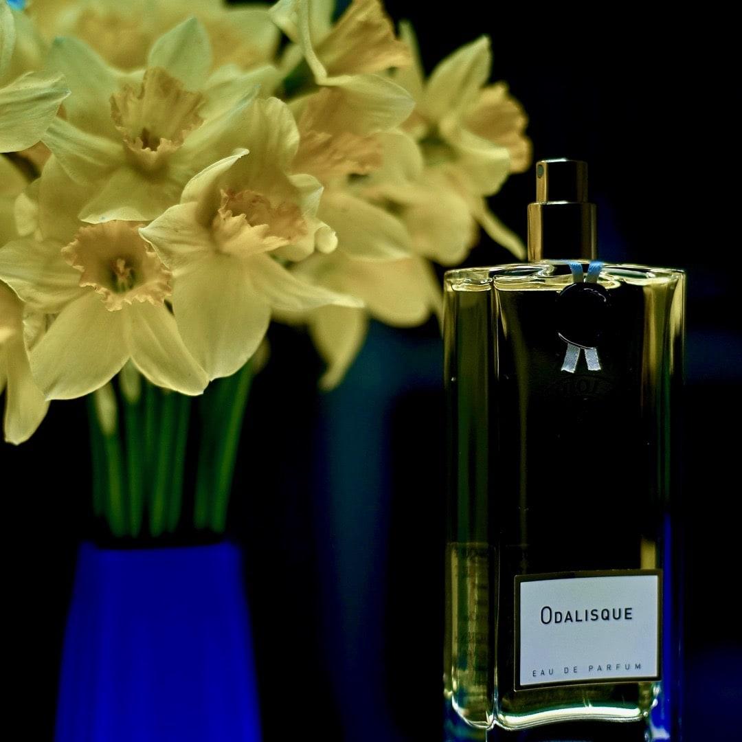 Парфюмированная вода Parfums de Nicolaï Odalisque